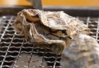 Oyster Grilled