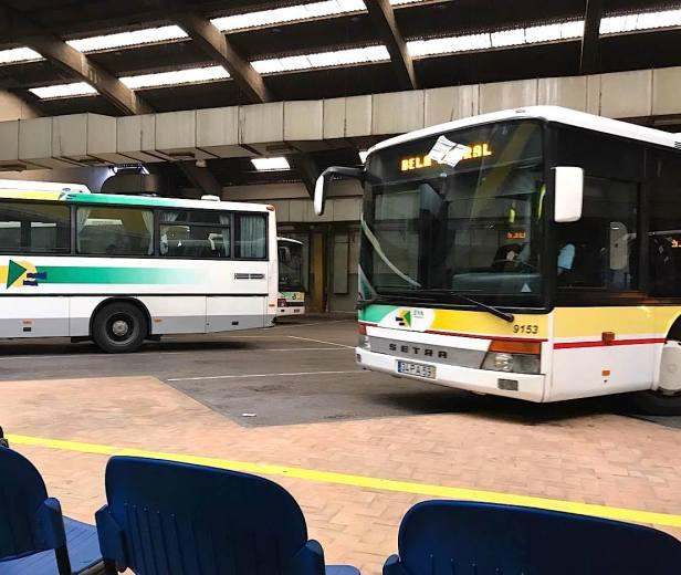 Lis Bus1